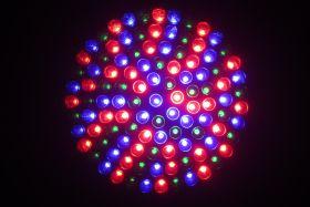 TOP mitai apie LED apšvietimą augalams